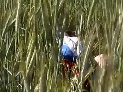 Fucking in the tall grass